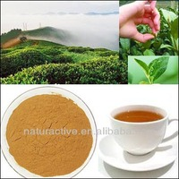 100% Pure Natural Product Green Tea Extract 20%-98% Tea Polyphenols