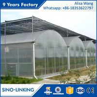 SINOLINK 2017 hot sale low price film greenhouse plastic film for commercial