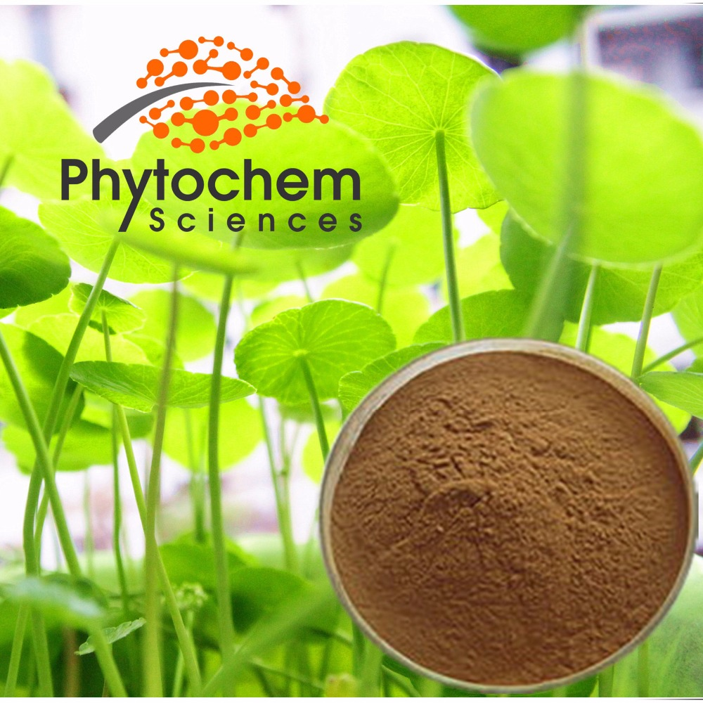 Organic Centella Asiatica/Gotu Kola Extract Powder 10%-90% Asiaticoside