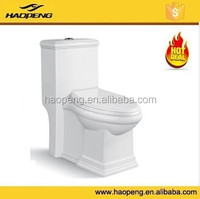 New Design Ceramic Siphonic One Piece Dual Flush Made In China Toilet