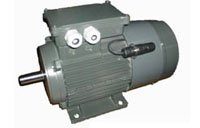 Spain VASCAT MAC R Series Three Phase Asynchronous Motor for Frequency Converters