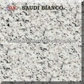 Black and White Saudi Bianco Granite
