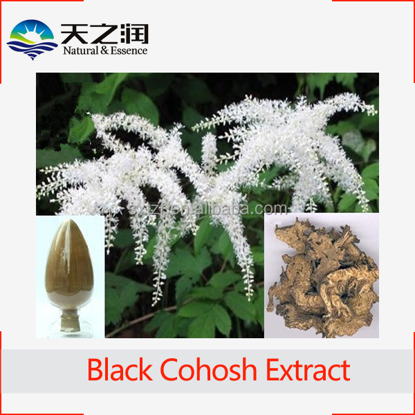 Supply Natural Black Cohosh Powder Extract 2.5% Triterpene glycosides