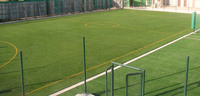 Synthetic Turf Sports Artificial Grass for Football soccer application natural grass turf