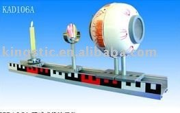 Instrument of demonstrate of formation of image eyeball (plastic pvc)
