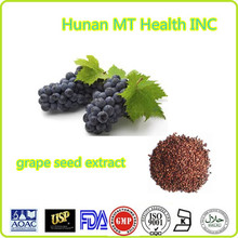 Free sample Grape seed extract/Hot seller grape seed extract/High quality grape seed extract powder 95%OPC