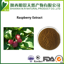 100% Natural no added Raspberry fruit seeds Extract