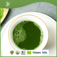 Japanese Green Tea Healthy Organic Matcha