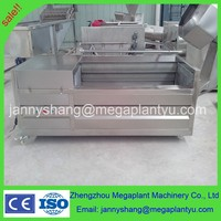small industrial automatic fruit and vegetable cleaning machine
