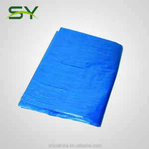 transparent PE tarpaulin 140gsm clear poly tarp with pp rope reinforced