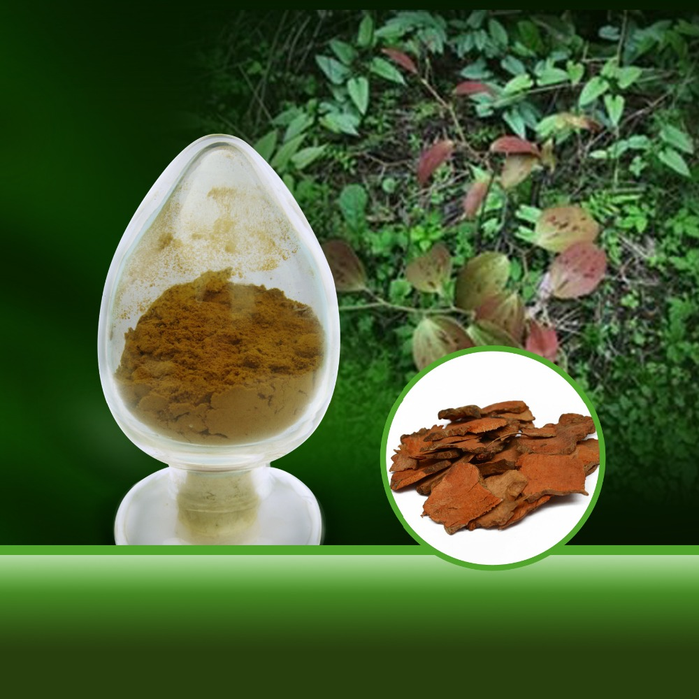 Extract Diosgenin Powder Wild Yam Extract Herbal
