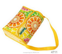 Most popular new coming cooler bag cool ice pack