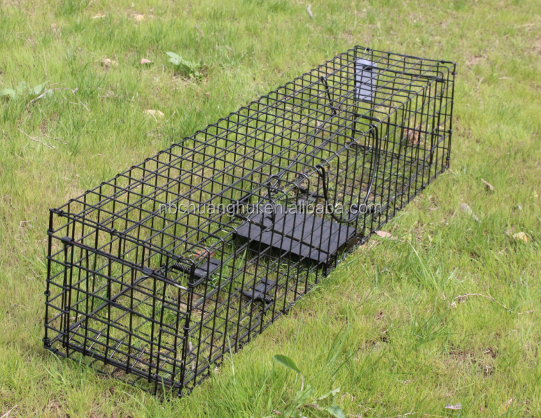 One-door Live Animal Cage Trap For Raccon,Stray Cat,Groundhog, Opossum,Armadillos