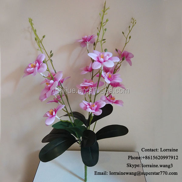 wholesale china factory cattleya flower orchids for sale