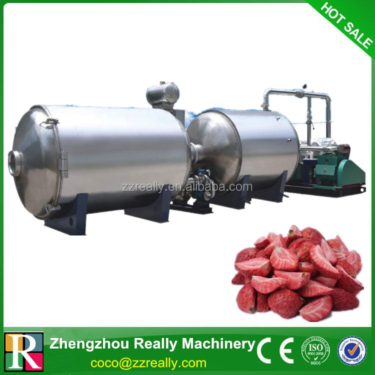 vegetable vacuum freeze dryer / used freeze drying equipment / freeze drying machine for sale
