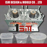 hold plastic storage case mould