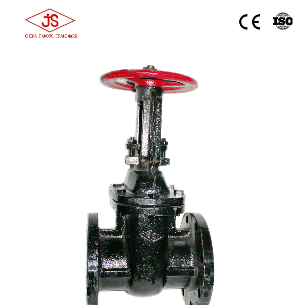 Wcb elastic sealed electric gate valve water truck valves stem