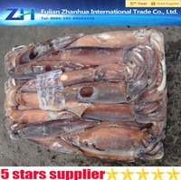 all types of seafood wholesale, frozen squid price, freeze illex squid