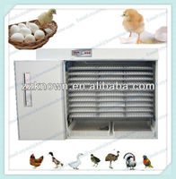 mini and commercial eggs incubator for sale