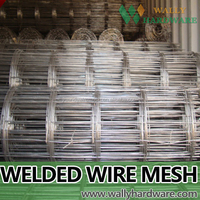 two layers 12 nests hot dipped galvanized/pvc coated welded mesh mink cage