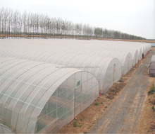 [manufacturer] Polytunnel greenhouse