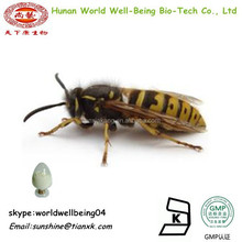 Pure Bee Venom Extract Powder / Bee Venom 91% 96% Powder For sale / Honey Bee Venom Manufacturers