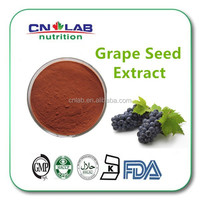 Health products 100% pure natural grape seed extract powder