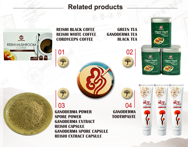 New Arrival Organic Ganoderma lucidum Reishi Extract Capsule CS4 Anti-insomnia Fatigue Relieving
