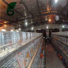 A type multi-tier day old chick cage for sale
