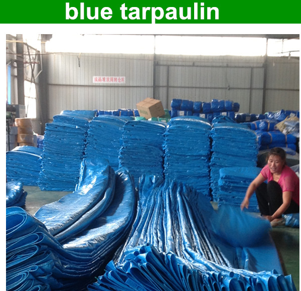 2014 China manufacturer tarpaulin Polyethylene fabric tarpaulin plastic sheet with all specifications