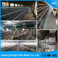 latest style high quality breeding chicken cage
