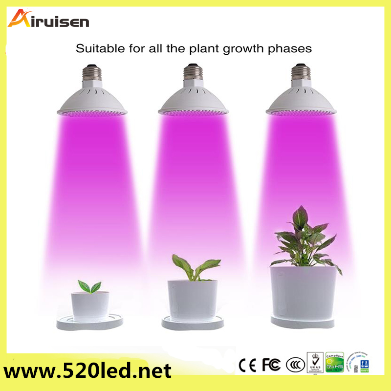 2017 New E27 20W 200 LED Plant Grow Light Garden Greenhouse Flower Seeding Light Lamp Bulb for Flower,Plant,Vegetable