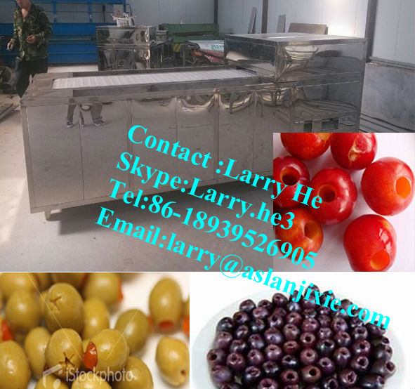 Hawthorn Pitter/olive pitter machine/fruit pitting machine