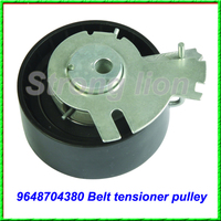 New arrival auto belt tensioner suitable for EUROPEAN CAR SERIES OE 9648704380 0829.C8 0829AO