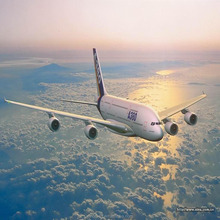 freight forwarding /shipping agent /Air freight to FRA/Germany