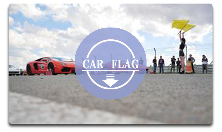 Custom new design style decoration car flag for wholesale