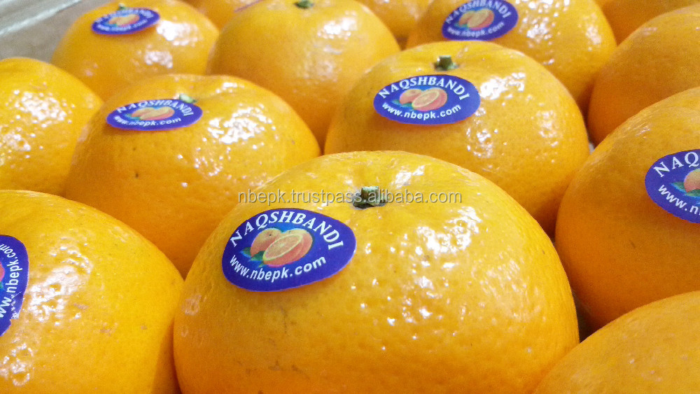 Kino Mandarin Tangerine Orange Citrus kinow kinow fruit from Pakistan