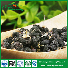 Ningxia organic black berries goji/ wild black goji berries