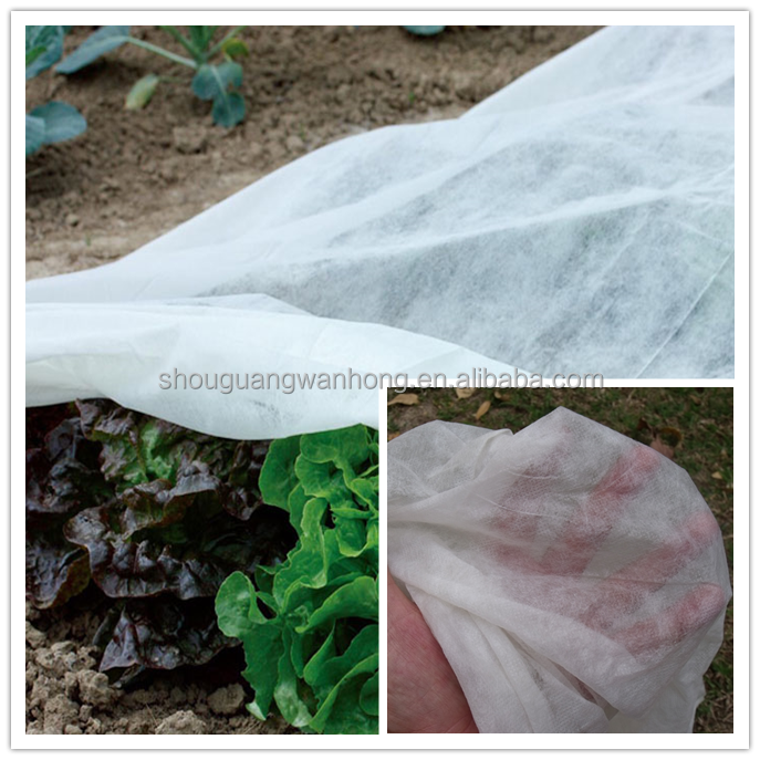 Agricultural pp spunbond nonwoven fabric /agriculture ground cover for plant,flower,fruit protection