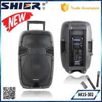 SHIER OEM 15 Inch Trolley Wireless Bluetooth Outdoor Subwoofer Speakers With Guitar Input