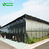 Multi Span Agricultural Glass Greenhouse