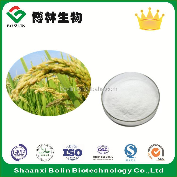 Bulk Rice Bran Extract Powder for Beauty Products