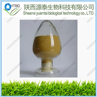 100% natural Cistanche tubulosa Extract powder 10:1 20:1plant extract Nicotinamide riboside and pregabalin powder