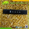 IQF Vegetables Iqf Frozen Sweet Corn