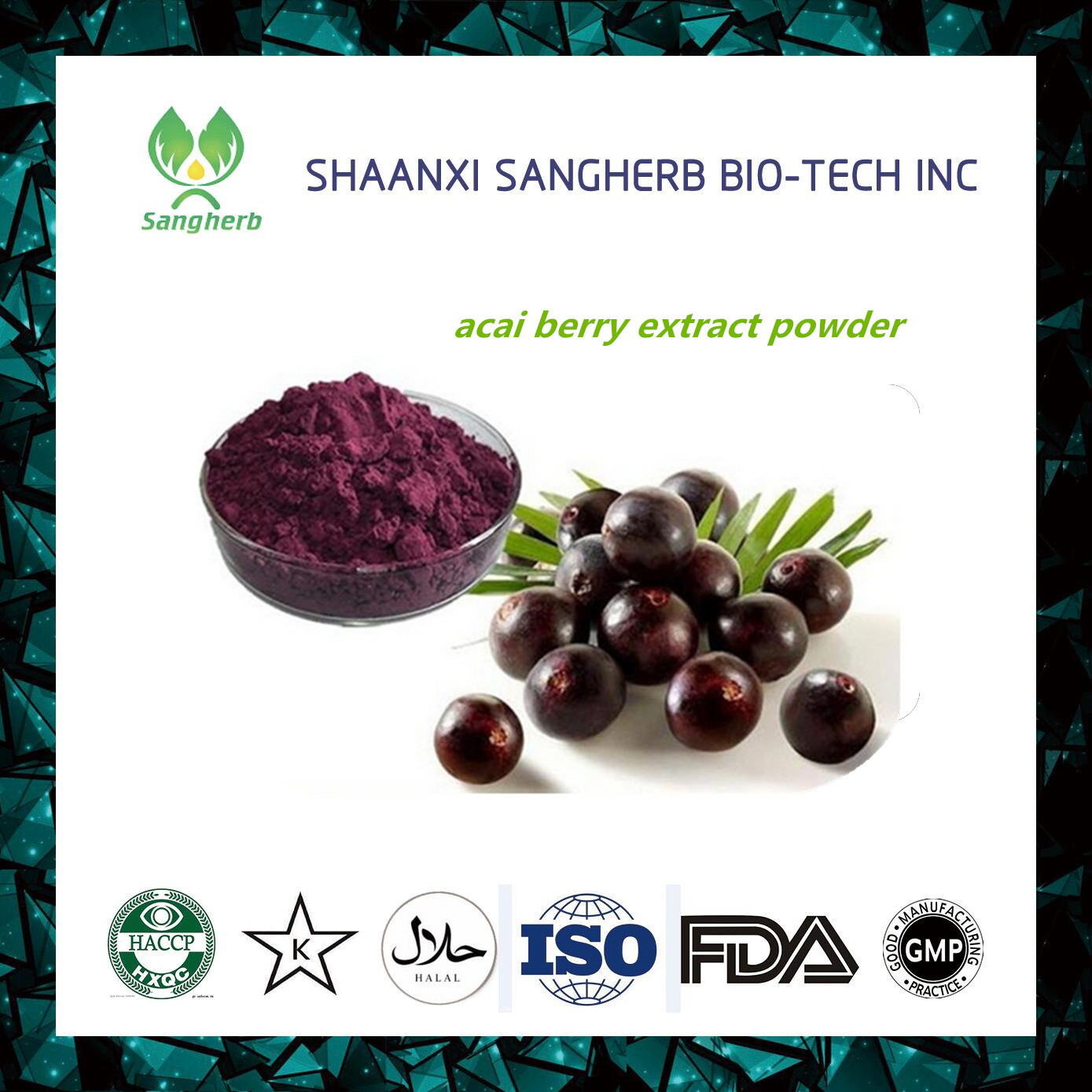 CE Certified gmp factory supply acai berry/ brazilian p.e. of and ISO9001 standard
