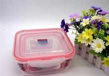 Good Quality Bottom Price Promotional Plastic Lunch Box