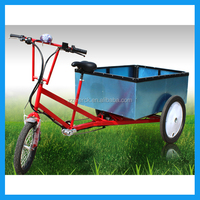 1:1 Pedal Assistant 3 Wheel Electric Cargo Trike
