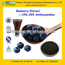 GMP Manufacturer Supply Natural Blueberry Extract Powder