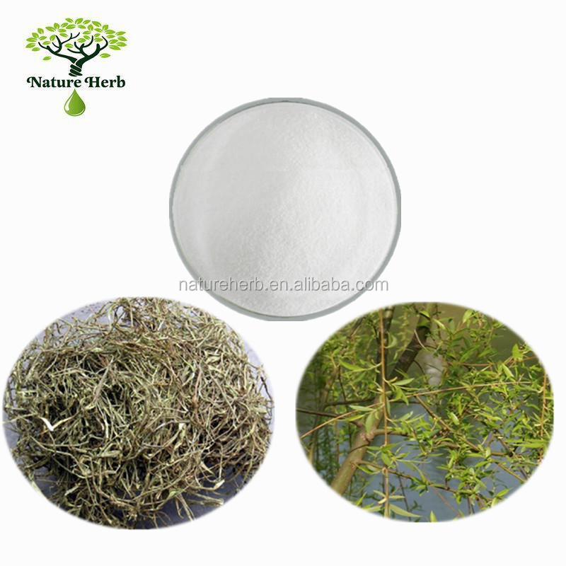 Medicine Grade White Willow Bark Extract 98% Salicin Powder