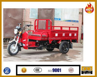 2016 2013 Hot Good New Petrol Popular 250cc Electric Tricycle Standing